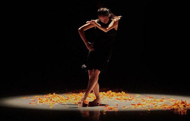 La reinvención de la Danza en tiempos de aislamiento, bailar desde casa