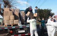 Alrededor  de sesenta mil cajas familiares serán entregadas en la región de Coquimbo