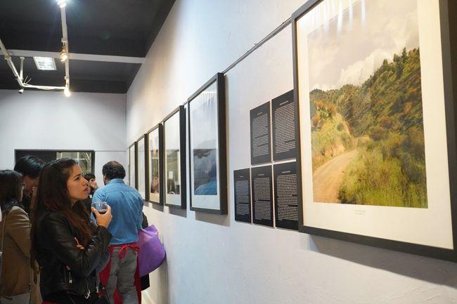 14 obras de artistas locales son adquiridas por la Corporación Cultural Municipal de Ovalle