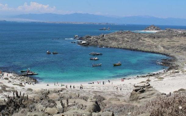 Estudio en borde costero regional busca reactivar la economía con foco en desarrollo sustentable