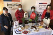 Mujeres de la provincia de Limarí se capacitarán en oficios para emprender en pandemia