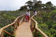 Parque nacional bosque Fray Jorge reabrirá sus puertas mañana martes 19