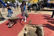 180 familias beneficiadas con proyecto de integración social en Ovalle