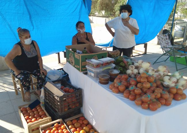 Pequeños productores agrícolas de El Palqui se lucieron en Feria Rural