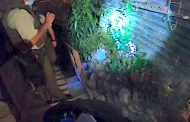 Policial: 7 detenidos y 55 millones de pesos en marihuana