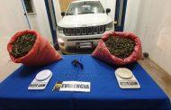Incautan casi 150 kilos de cannabis en Los Vilos